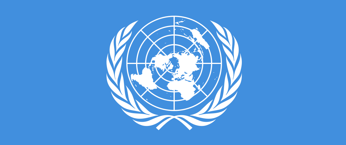 "United Nations' webinar to ""Keep the Momentum for Action"""